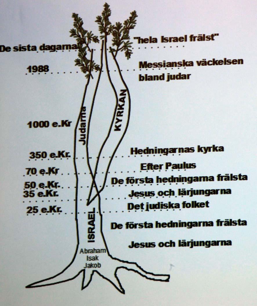 Trädet-judarna-kyrkan